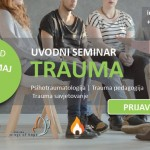 seminar trauma_n